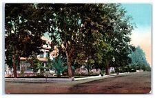 Early 1900s Residential Street, Healdsburg, Sonoma County, CA Postcard