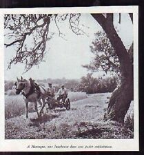1940  --  MORTAGNE  FAUCHEUSE A TRACTION CHEVAL  K278