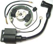 Bobina, Statore, Accensione Rotore completo per KTM 50 - prodotto aftermarket