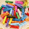 50/100 Mini Natural Wooden Craft Pegs Clothes Paper Po Hanging Spring-Clip