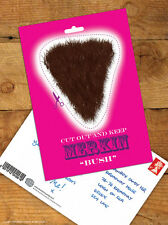 Brainbox Candy 'Bush Merkin' Postcard Funny Rude Comedy Humour Cheeky Joke