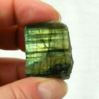 Labradorite Part Polished Piece Gold Iridescent Lustre 3cm 19g