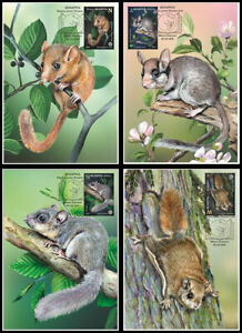 """2021 Belarus. FAUNA """"Red Book of the Republic of Belarus. Rodents"""". 4 cards"""