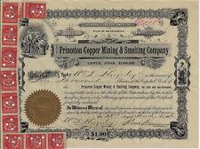 ARIZONA 1906 Princeton Copper Mining & Smelting Co Stock Certificate Hartford