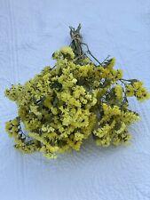 Sinuata Statice Yellow Dried Flower Bunch Bouquet Bundle Farmhouse Wedding +
