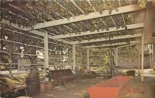 South Amana Iowa~Ackeman Winery Inc~100 Year Old Grape Vine~Arbor~1970s PC
