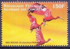Comores 1999 MNH, Scarlet ibis, Water Birds  - H7