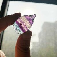 1X Natural Rainbow Fluorite Quartz Crystal Hand Carved Hedgehog Reiki Healing CA