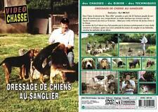 Dressage de chiens au sanglier  - Chiens de chasse - Vidéo Chasse