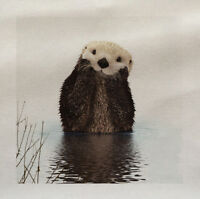 Otter Cute Animal Wilflife Country side Fabric Panel Cushion Upholstery Craft