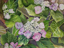 """Painter Suzanne Obrand, Holocaust Survivor, Watercolor """"Pansies and Foliage"""""""
