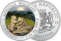 Somalia 100 Shilling 2019 Leopard 1 Oz Silber Anlagemünze in Farbe