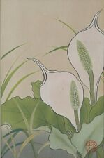 Japan Japanese Floral White Callas Lilly Woodblock Print Masaharu ca 20th c