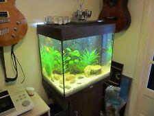 juwel aquarium fish tank lido 120