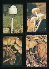 Pilze, 4 Motiv-Blöcke Pilze aus Guayna, postfrisch,  (MO3)