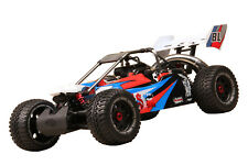 FS RACING 10203 1/5 RC HOBBY BUGGY REMOTE CONTROL 30cc PETROL ENGINE 2WD OFFROAD