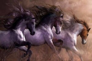 Modern Home Art Wall Decor True Horses Oil painting Picture Printed on canvas