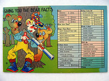 Linen Postcard Comic Tick Box Asheville Beals GC14 New Giving you the Bear Facts
