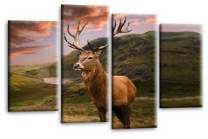 Wall Art Canvas Print Picture Scottish Highland Stag Cattle Cow Brown Sepia Grey