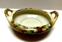 Vintage M Z Austria Hand Painted Double Handled Dish