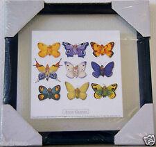tableau cadre ANNE GEDDES photo 9 bébé papillons 23cms vitre verre decoration