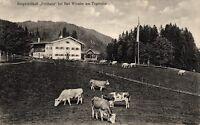 """Bad Wiessee, Bergwirtschaft """"Freihaus"""", um 1915"""