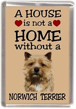 """Norwich Terrier Dog Fridge Magnet """"A HOUSE IS NOT A HOME"""" by Starprint"""