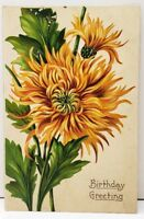 Pretty Chrysanthemums Birthday 1911 Watersville Carrol Co Md Postcard E9