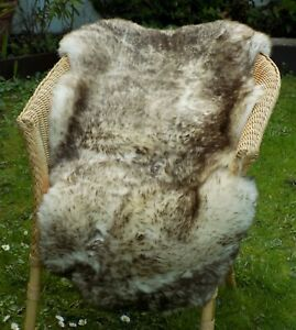 Genuine British Sheepskin Rug - BROWN TIPPED - Brown Tips Ivory Real Pelt