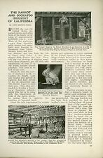 1919 Magazine Article Parrot & Cockatoo Industry of Southern California Birds