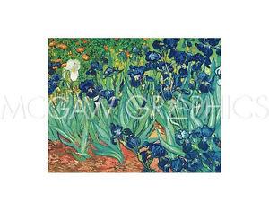 """VAN GOGH VINCENT - IRISES IN THE GARDEN - ART PRINT POSTER 11"""" X 14"""" (205)"""