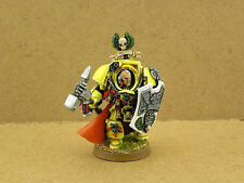 Warhammer 40k painted Captain Darnath Lysander