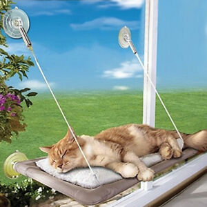 US Cat Puppy Window Mounted Basking Bed Pet Shelf Kitten Perch Seat High Hammock