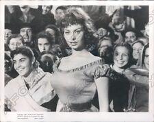 Grammy Award Winning Actress & Singer Sophia Loren Press Photo