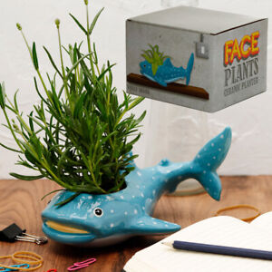 Bathroom ornament indoor Planter Plant Pot Whale Shark nautical coastal decor