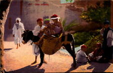 Postcard Italian Street Scene Boys on a Donkey Algeria