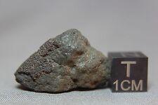 Jbilet Winselwan CM2 Meteorite 5.95 grams with a section of fusion crust