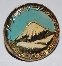 Iran, military pin from the Shah Muhammed Reza Bahalvi Era