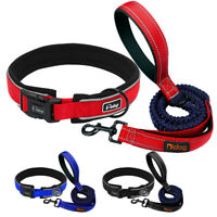 Reflective Neoprene Small Large Dog Collars and 2 Handle Bungee Lead Blue Red