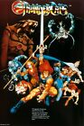 Thundercats Vintage 80's Poster 24X36 inches