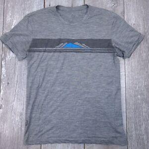 Icebreaker Merino Wool Short Sleeve Shirt Top Men Size Medium Gray New Zealand