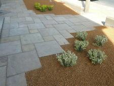 Autumn Brown Indian Sandstone Paving Patio Slabs. 20m2 patio pack  £17.55/m
