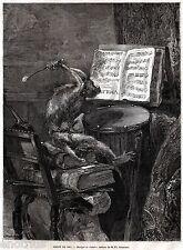 MUSICA DA CAMERA,di Rousseau.Caricatura con Musicista Scimmia.Stampa Antica.1861