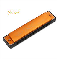 Colorful Brand New Double Row Bee 24 Holes Harmonica Musical Beginner Gift