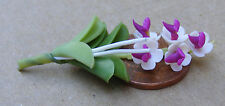 1:12 Scale Purple & White Orchid Doll House Miniature Flower Garden Accessory 9s
