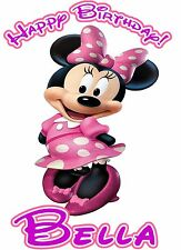 Minnie Mouse Princess Birthday Party t Shirt Iron On Transfer Personalized Decal