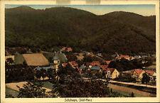 Sülzhayn bei Ellrich Thüringen alte Postkarte um 1920 Teilansicht Verlag Stieber