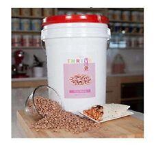 Pinto Beans EMERGENCY survival 6 gallon GAMMA/MYLAR bucket, freeze dried food