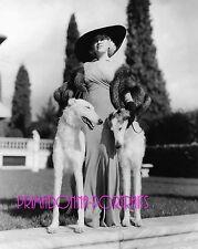 MAE WEST 8x10 Lab Photo 1930s Elegant Gown with BORZOI DOG, Fur Coat Portrait