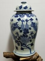 Chinese Blue & White Porcelain  Glaze Ginger Jar vases